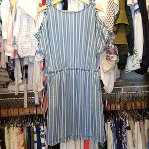 Naked Zebra striped chambray dress